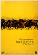 Discover Poland, Buffalos, Polish Travel Poster